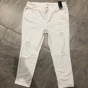 New York & Company (Soho Jeans)